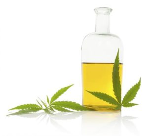Hemp oil after extraction